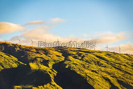 wind turbines in a row along