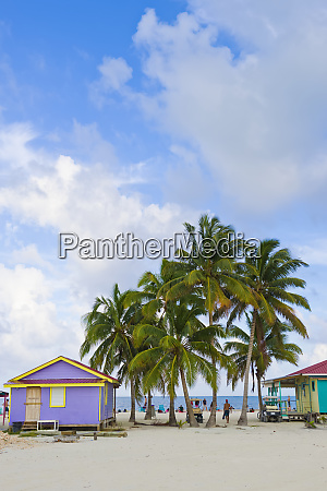 colourful buildings and palm trees on