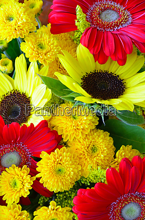 colorful autumn floral arrangement