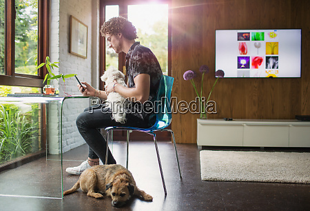 young man with dogs using smart