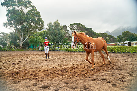 young woman training horse in rural