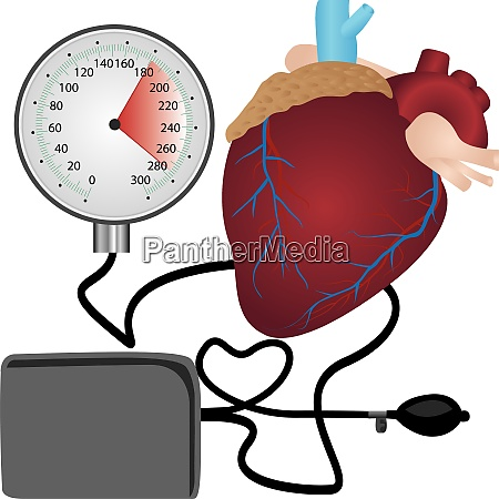 blood pressure measuring cardio exam
