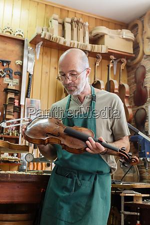violin maker checking finished instrument to