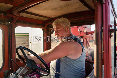 farmer steering tractor during harvest in