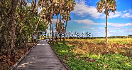 bird watching boardwalk in the marsh