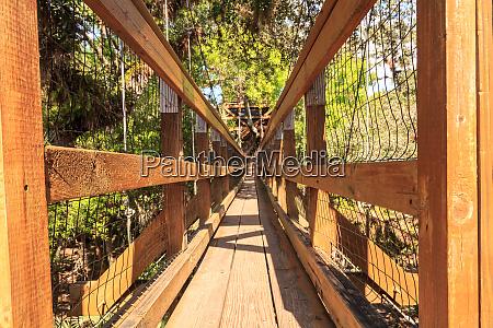 tower bridge and bird watching walkway