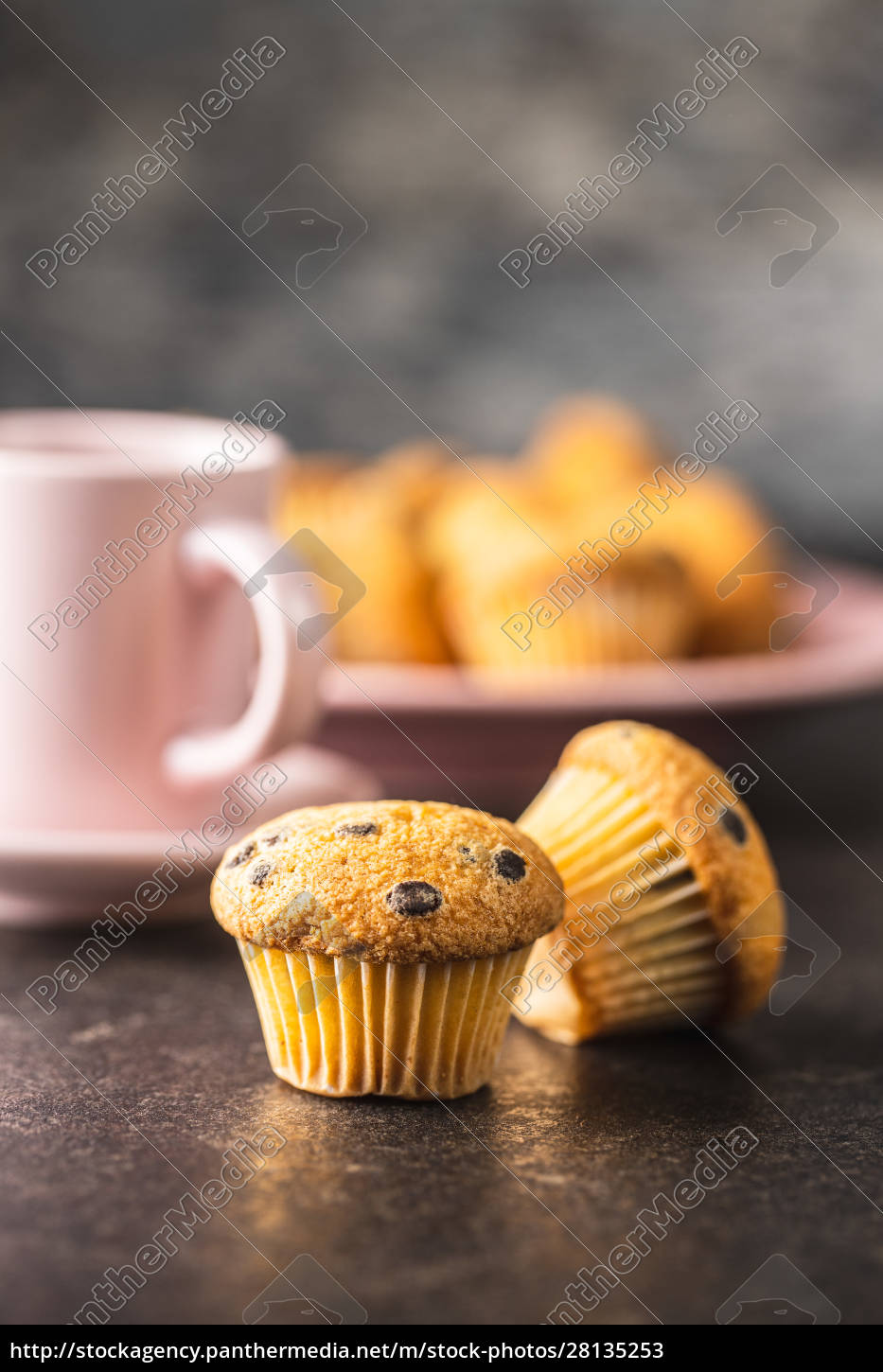 tasty, chocolate, muffins., sweet, cupcakes. - 28135253