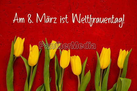 yellow tulip flowers red background weltfrauentag