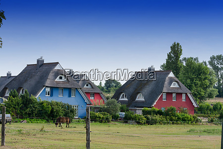 houses on the fischland darss