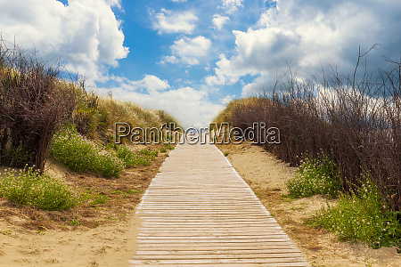 wooden path to the beach between