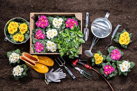 gardening tools and flowerpots in garden