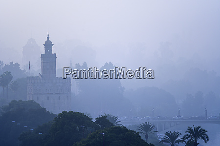 torre del oro amongst trees and