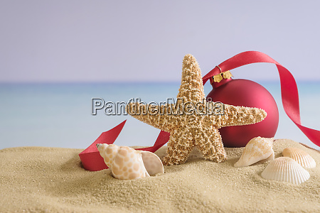 red bauble starfish and shells on