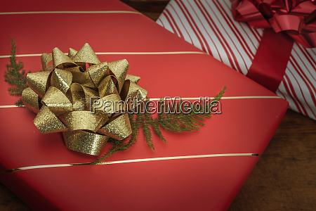 pine frond under bow on christmas