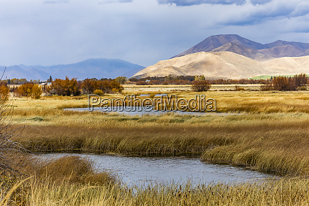 ponds in marsh