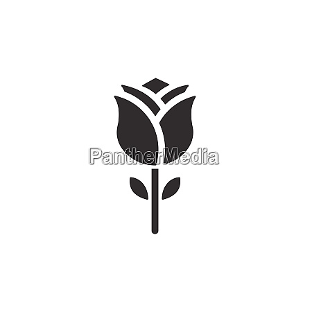 rose isolated icon nature vector illustration