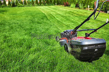 lawn mower cutting green grass in