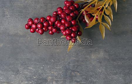 red rowan berries on vintage rustic