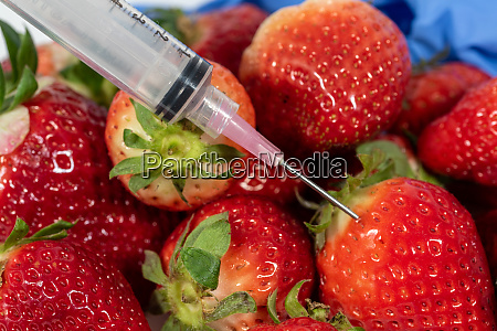 genetic modification of fruits and vegetables