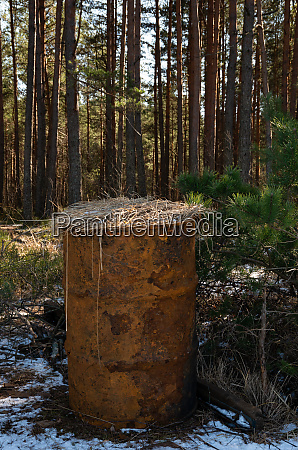 old rusty barrel in the forest