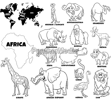 educational illustration of african animals color