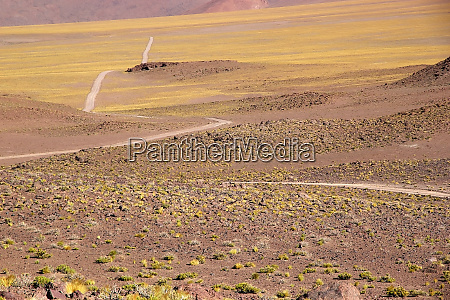 the road to salar of arizaro