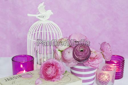 pink ranunculus flower still life