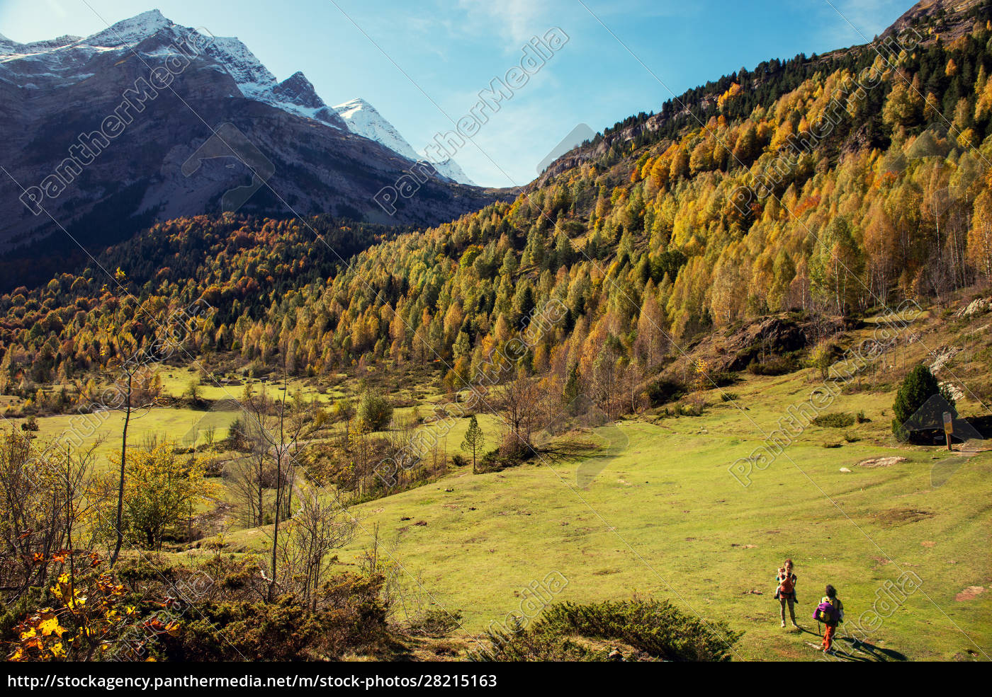 color, of, autumn, at, mountain, (french - 28215163
