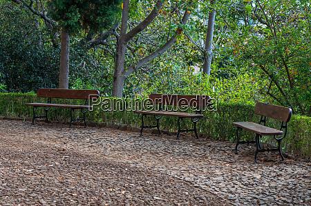 footpath, in, the, botanical, garden - 28215482