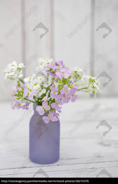 little, purple, spring, flowers, in, vase - 28215376