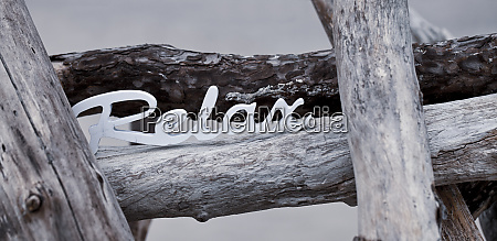 word, relaxed, placed, on, driftwood - 28215373