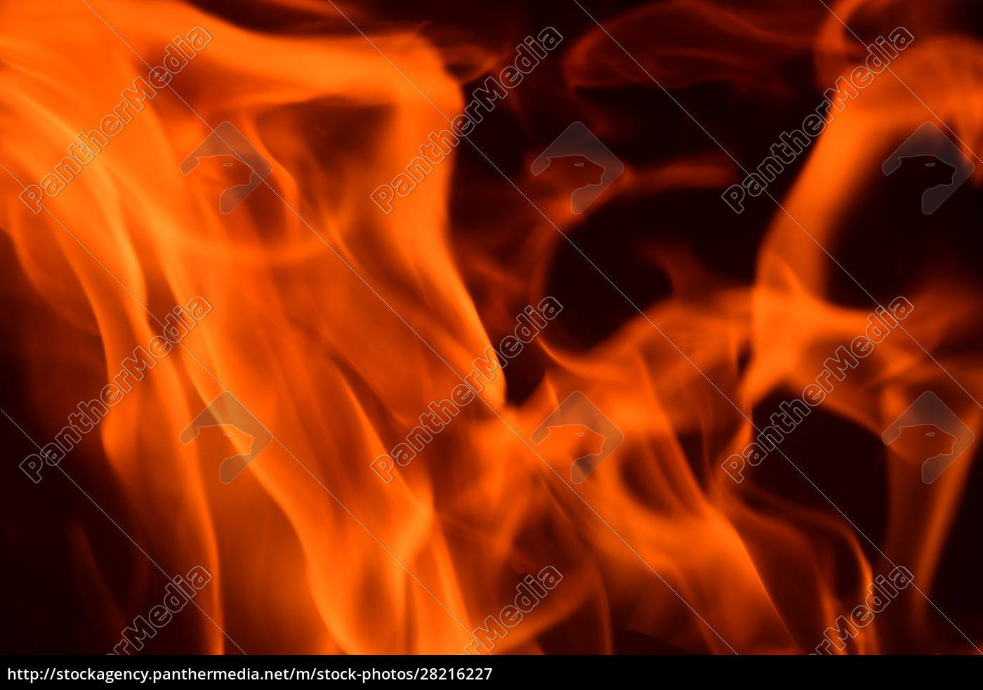 fire, in, the, fireplace, , log, fire, - 28216227