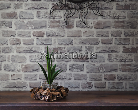 interior, , chest, of, drawers, , houseplant - 28216727