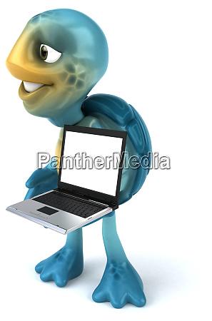 fun, turtle - 28217586