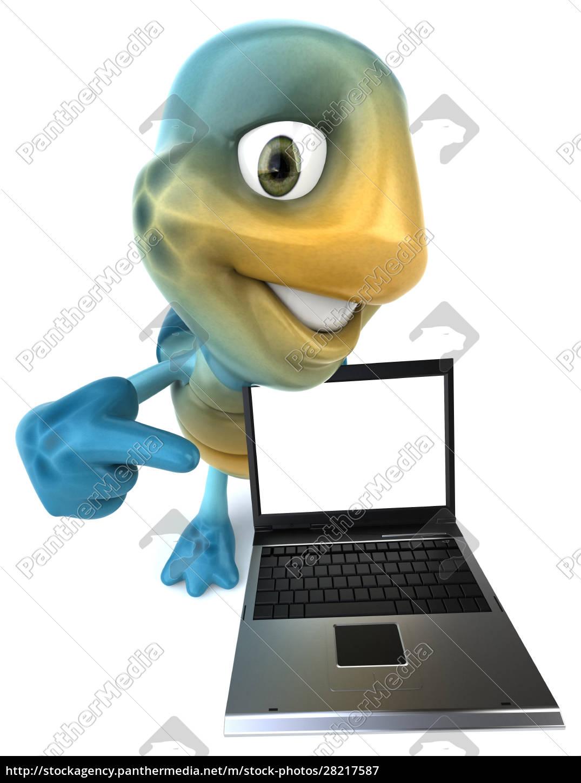 fun, turtle - 28217587