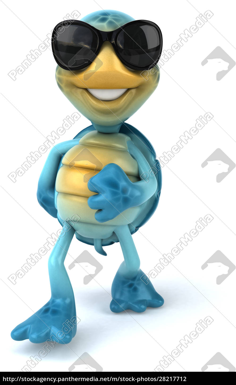 fun, turtle - 28217712