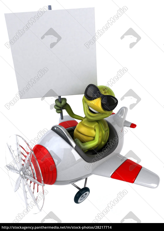 fun, turtle - 28217714