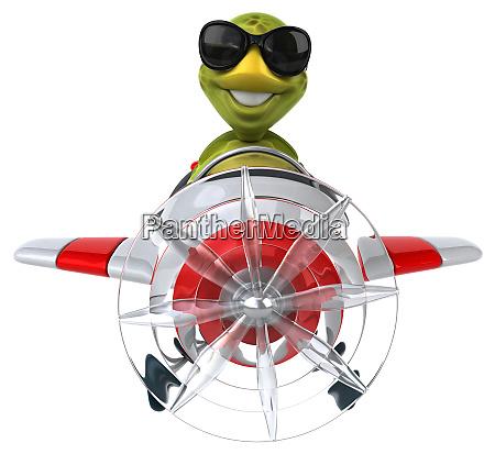 fun, turtle - 28217716