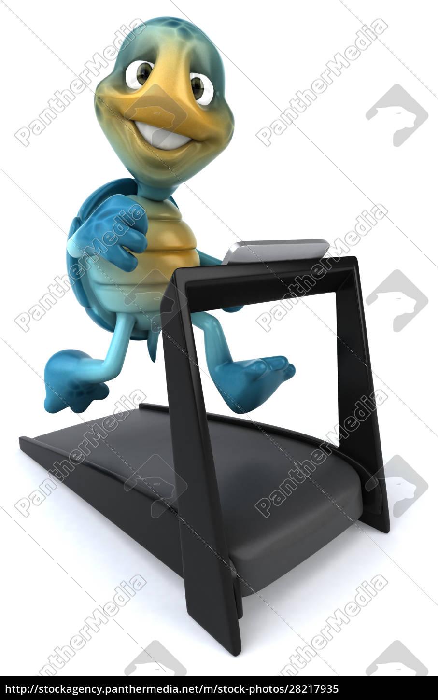 fun, turtle - 28217935