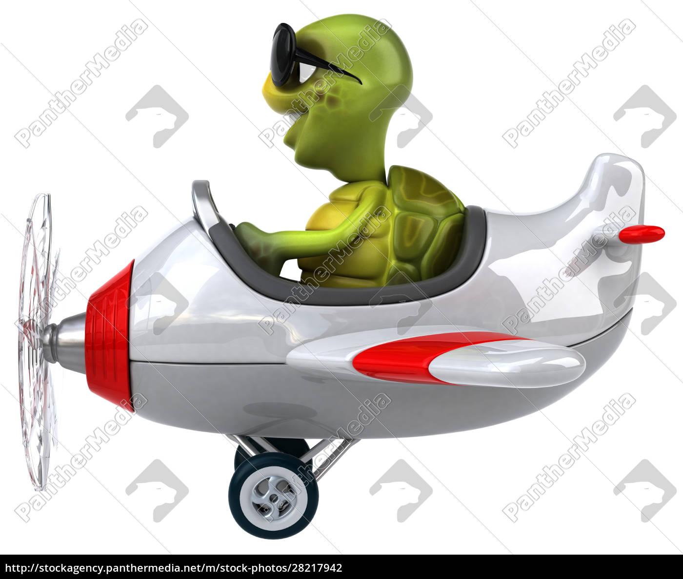 fun, turtle - 28217942