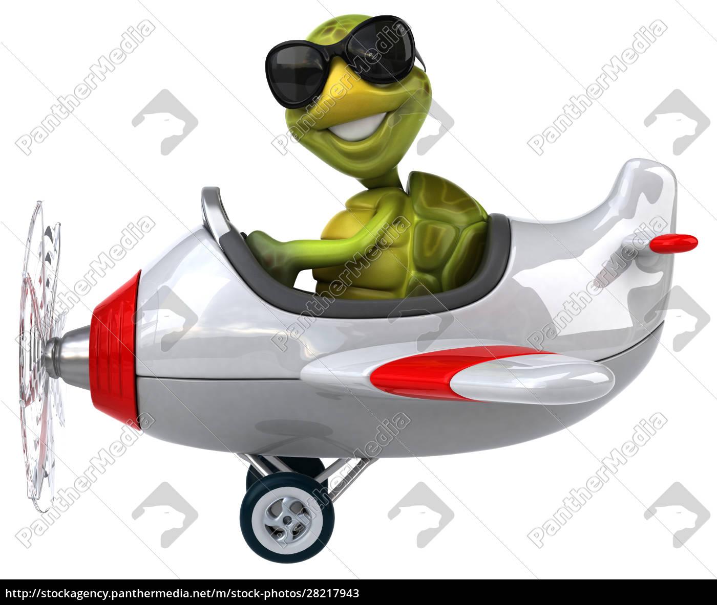 fun, turtle - 28217943