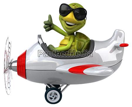 fun, turtle - 28217945