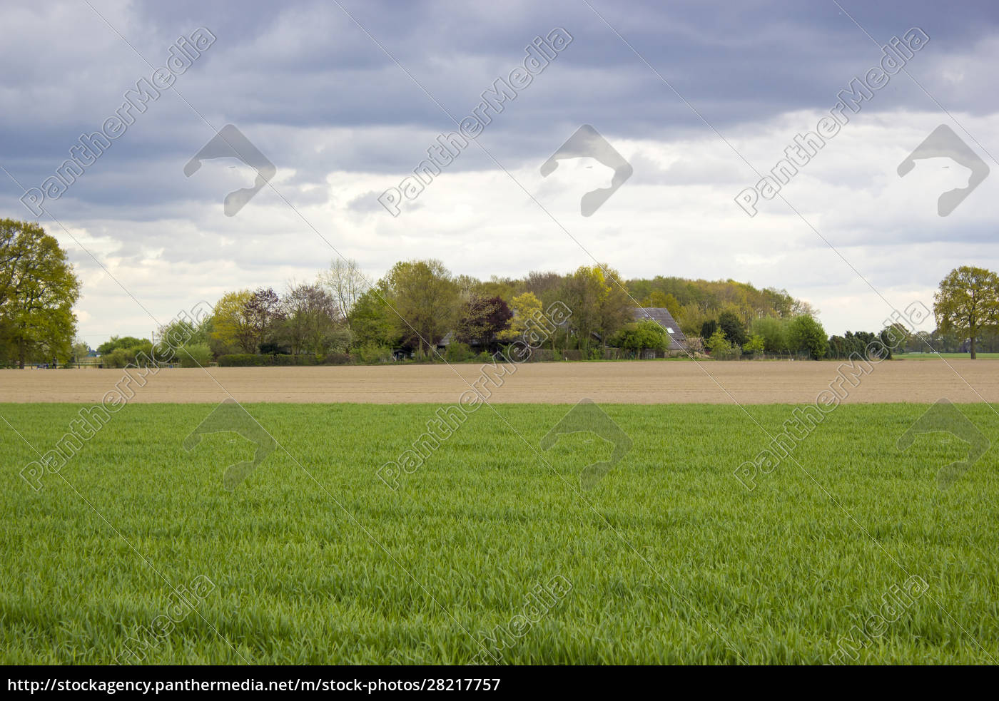 german, countryside, landscape, , lower, rhine, region - 28217757