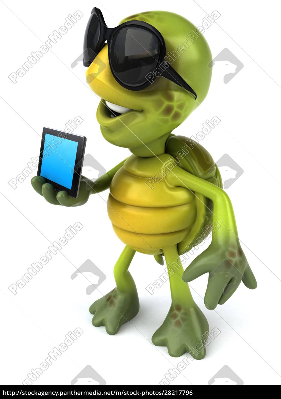 turtle - 28217796