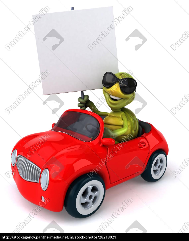 fun, turtle - 28218021