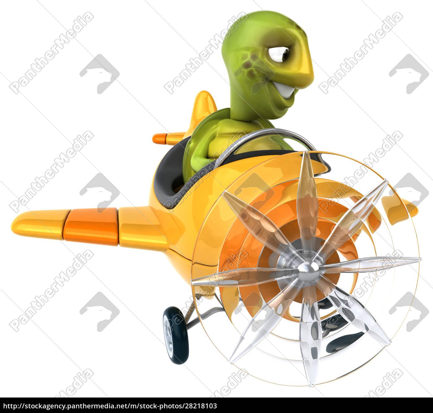 fun, turtle - 28218103