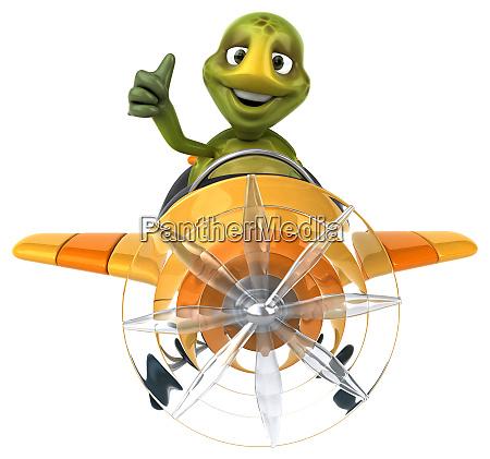 fun, turtle - 28218105