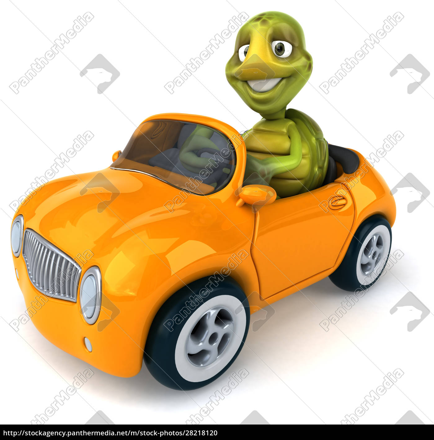 fun, turtle - 28218120