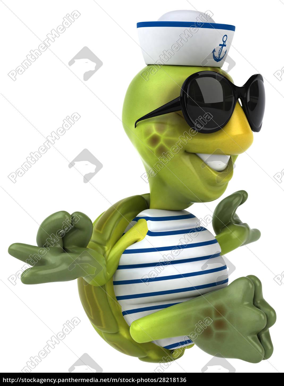 fun, turtle - 28218136