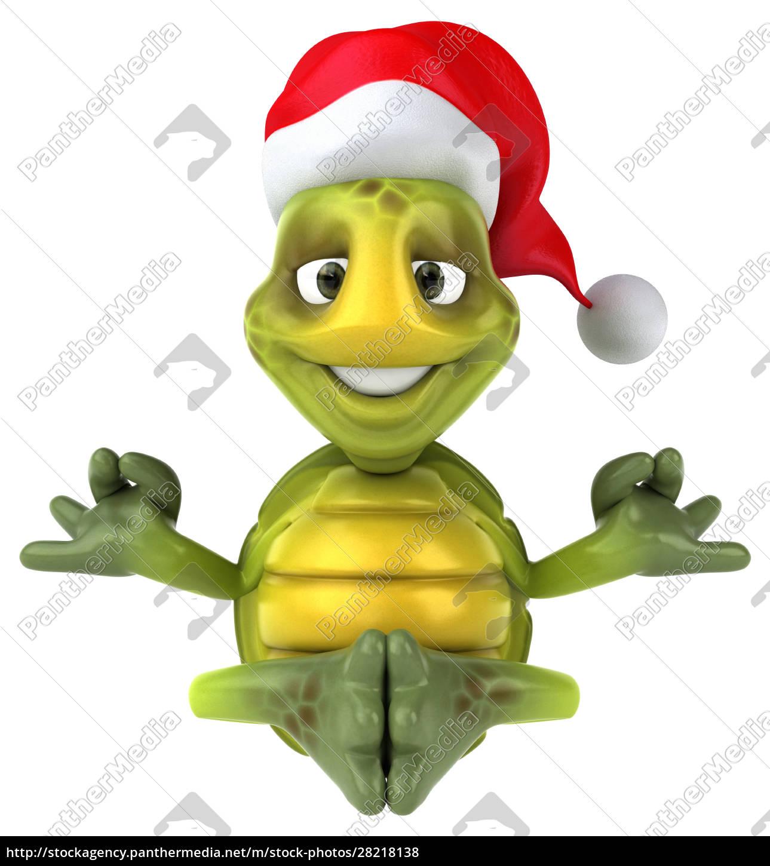 fun, turtle - 28218138